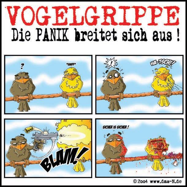 vogelgrippe - die panik breitet sich aus